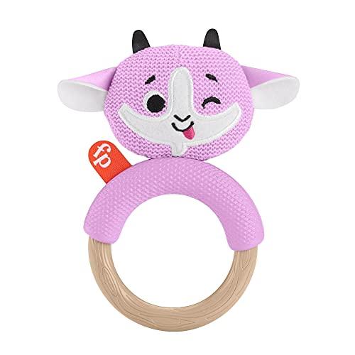 Fisher Price GRR03 Beißring Spielzeug