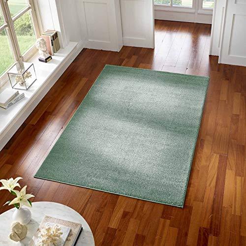 Taracarpet Teppich Kurzflor modern für Wohnzimmer Schlafzimmer und das Kinderzimmer super weich und Öko Tex Zertifiziert Mint grün 120x170 cm