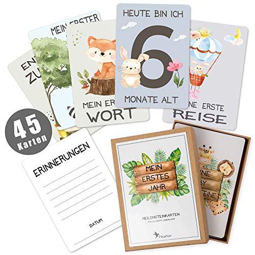 45 Baby Meilensteinkarten Pikaflor für Junge und Mädchen (handgemalte Tiere, Deutsch) Meilenstein Karten Set mit Geschenkbox + Schöne Geschenkidee zur Geburt, Taufe & Babyparty