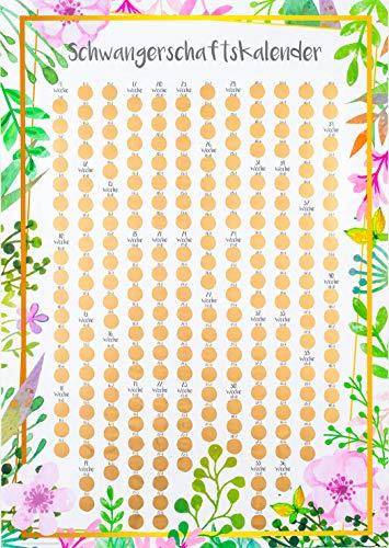 Friendly Fox Schwangerschaftskalender - stilvoller Begleiter durch die Schwangerschaft - Rubbel-Kalender für jeden Tag - Schwangerschaftstagebuch
